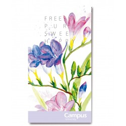 LIBRETA CAMPUS 86x160 TAPA BÁSICA 30H