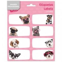ETIQUETAS ESCOLARES STUDIO DOG GLASSES