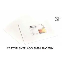 CARTÓN ENTELADO PHOENIX 3F 27X22CM