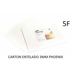 CARTÓN ENTELADO PHOENIX 5F 35X27CM